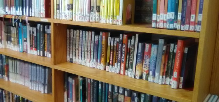 "Library ""Shelfie"" Day"
